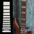 ジャズ・ベース・ブロック(ホワイトパール) 5弦ベース用